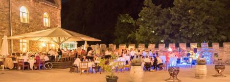 Weddingparty im Schloss Rothschild Waidhofen1 Kopie